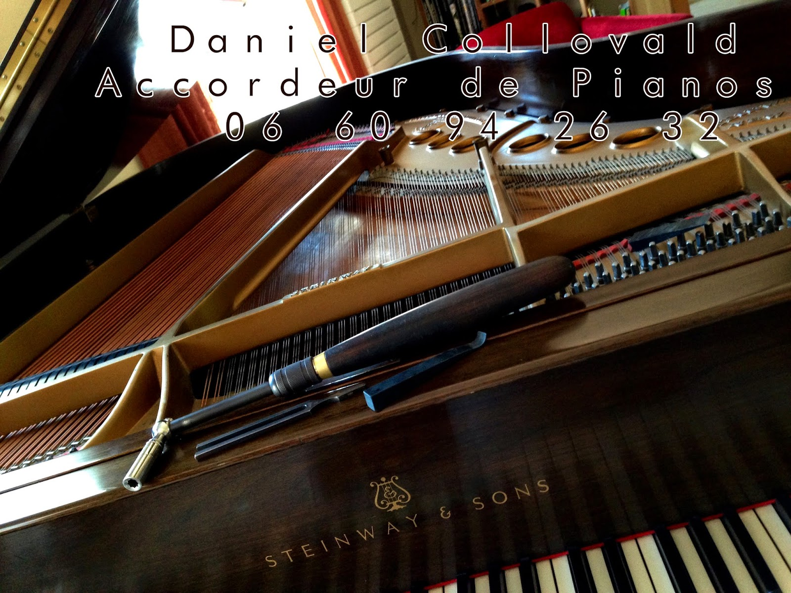 Accordeur de pianos Daniel Collovald