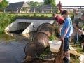 Handreiking vispassages Noord-Brabant