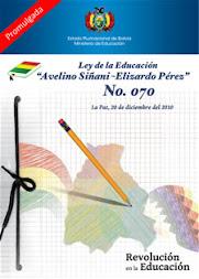 LEY AVELINO SIÑANI Y ELIZARDO PEREZ