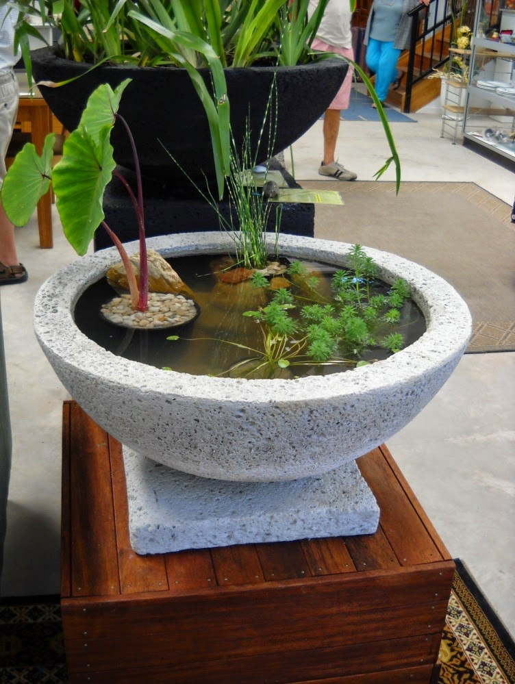 Indoor water garden ideas for Water garden ideas