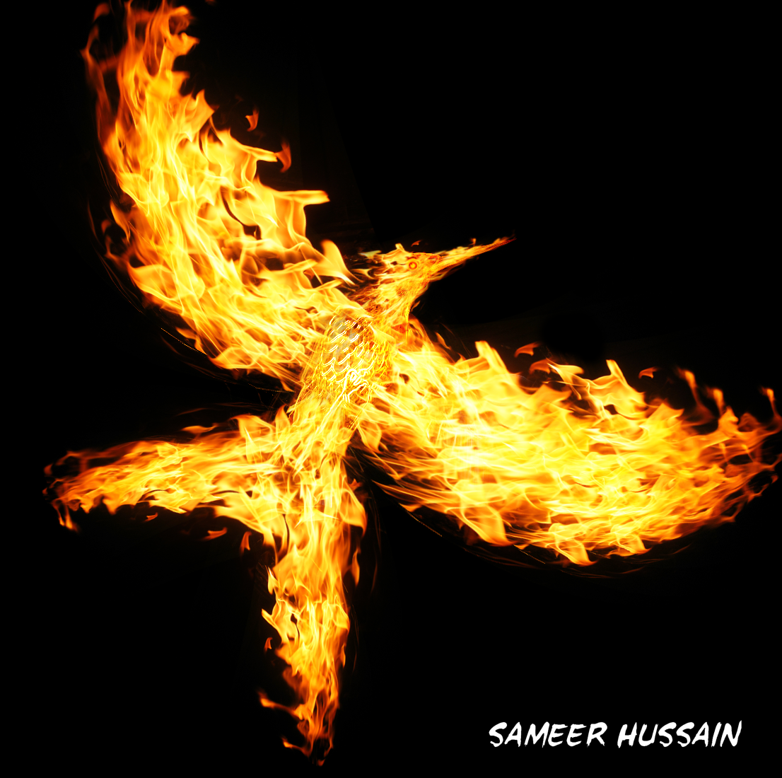 Thatsameer graphics photomanipulation mockingjay fire bird hundreds of tiny flame images manipulated in to the hunger games mockingjay bird photoshop cs5 biocorpaavc Choice Image