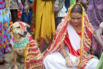 girl got married to a dog in India Jharkhand state