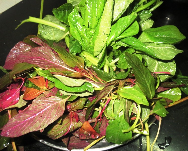 how to cook amaranth leaves