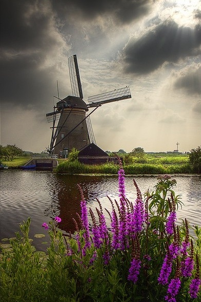 Citaten Over Nederland : Solitude citaten over nederland ers