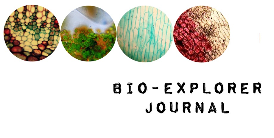 Bio-Explorer Journal