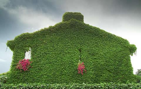 Jardin vertical c mo asegurarnos un buen sistema de riego for Sistema de riego jardin vertical