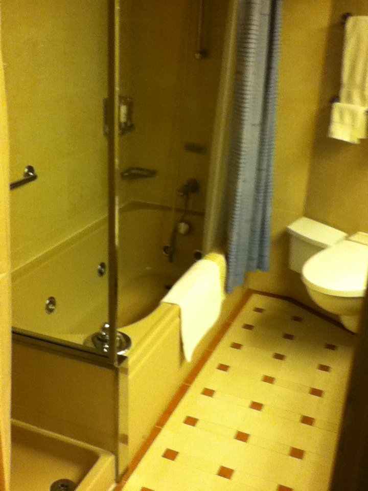 Amazing Handicap Tub Shower Combination Pictures Inspiration ...