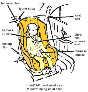 Child Car Safety Seat Inspections Available From Roosevelt Island Public Department
