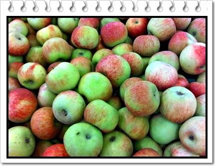 buah apel malang