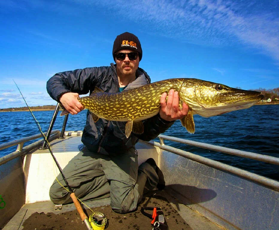 Pike on the fly and dutchies on their way camp drags for Ktp fishing report