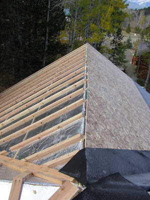 Insulated Roof Panel Retrofit - Palmer Cabin Vented