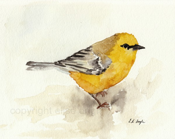 Watercolor painting of yellow bird