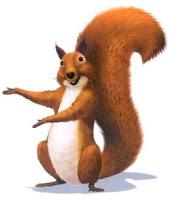 Médecine de l'écureuil  dans ECUREUIL ecureuil