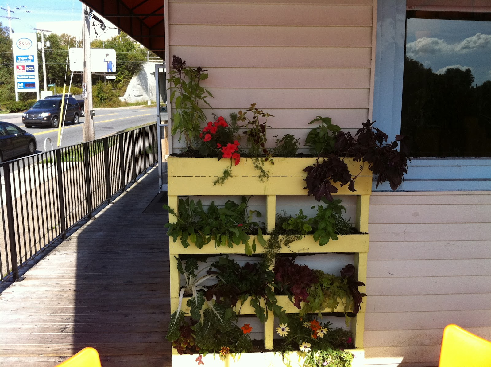 Niki jabbour the year round veggie gardener april 2012 for Jardin vertical casero