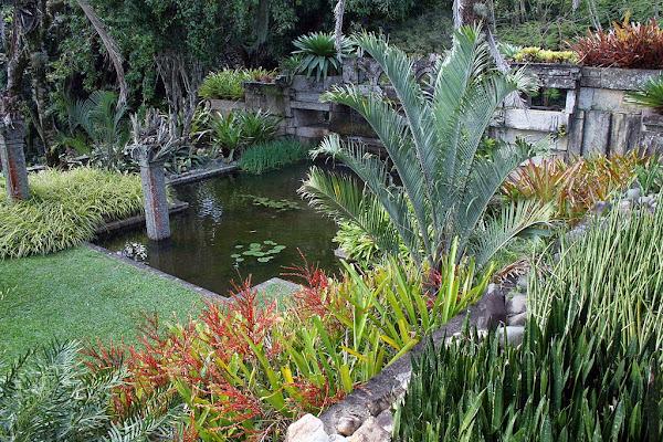 Jardineria paisajista cuidar de tus plantas es - Paisajista de jardines ...