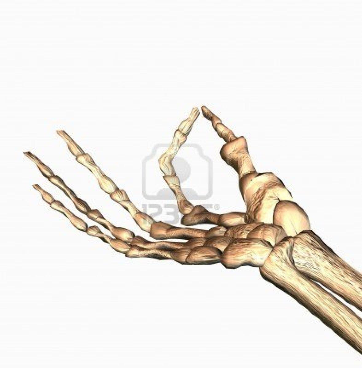 Precisión de la mano: mayo 2013