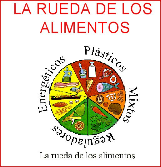 LOS ALIMENTOS, TIPOS Y CLASIFICACIÓN.