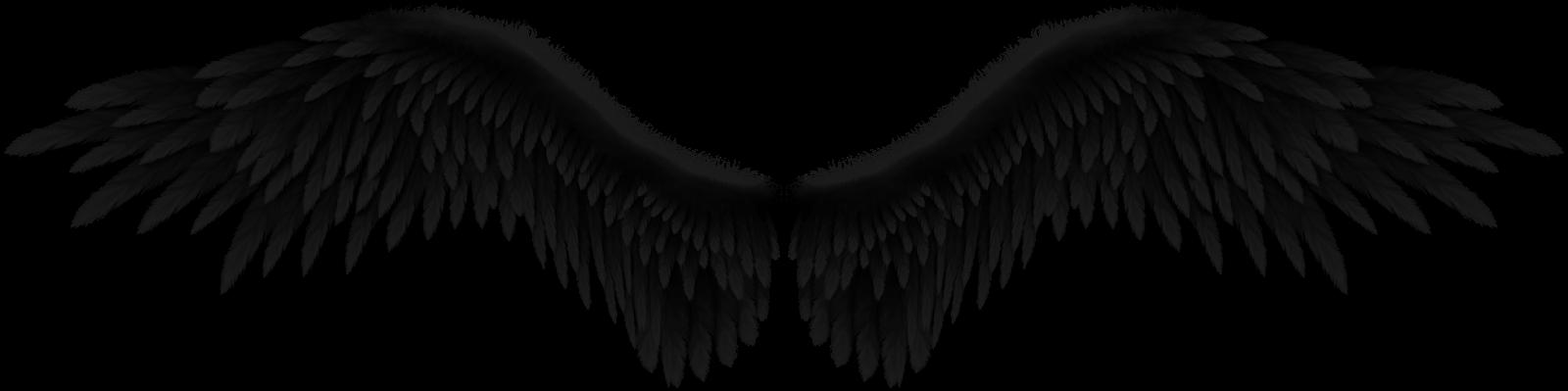 asas de anjo ficam - photo #43
