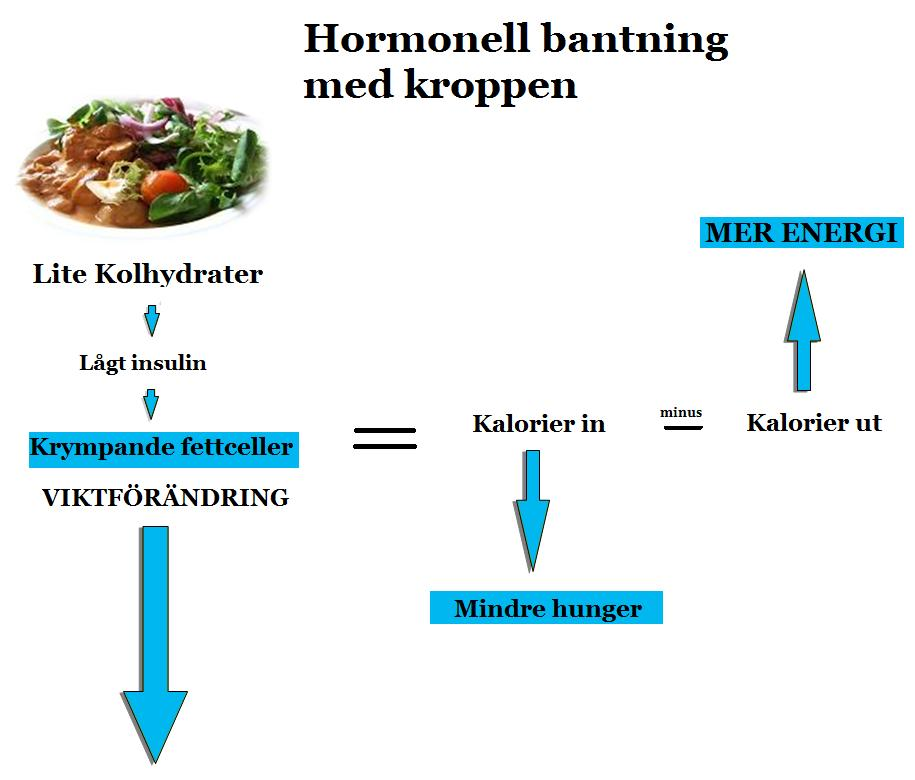 matschema för viktminskning