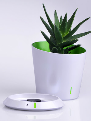 Innovative Tools and Gadgets for Plants (15) 14