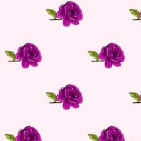 free lilac rose pattern
