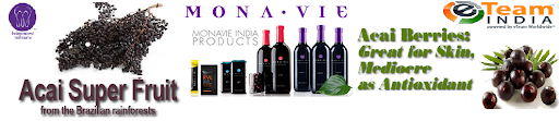 Why MonaVie Business
