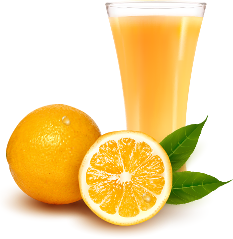 naranjas y zumo vectorial
