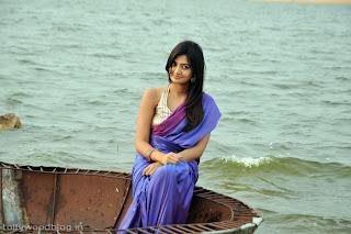 nikitha_narayana_hot_saree_stills_photos_010.jpg