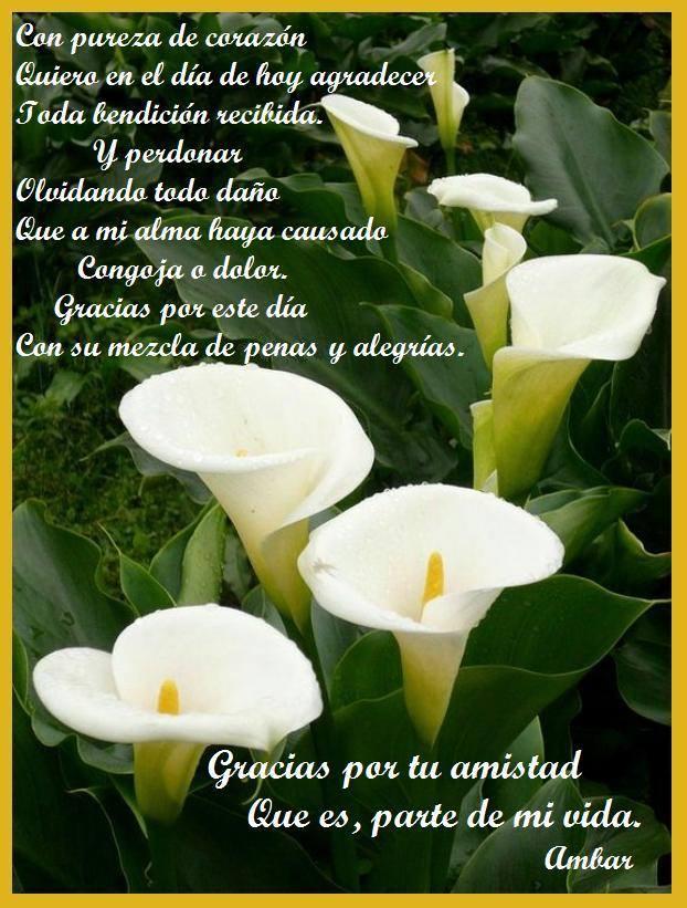 Este es un regalo de Ambar, del blog                         http://ambaringles.blogspot.com.es/