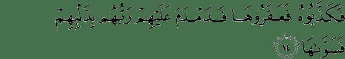 Surat Asy-Syams Ayat 14