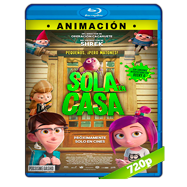 Gnomos al ataque (2017) BRRip 720p Audio Dual Latino-Ingles