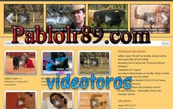 Videotoros