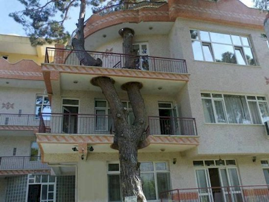 13 Times Humans Respected Mother Nature - This villa in Izmir, Turkey