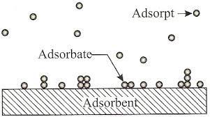 adsorbent adsorpsi berbeda dengan absorbsi