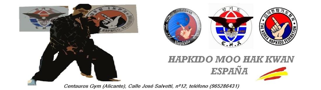 HAPKIDO SPAIN (Escuela de Hapkido) Alicante