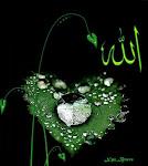 ~**~ ISLAM ~**~