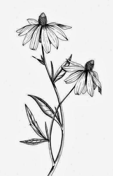 Daisies tattoo stencil