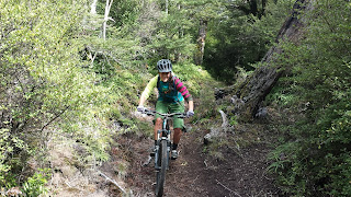 Kaimanawa Mountain Biking. New Zealand Mountain Biking