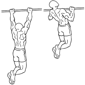 chin up, back exercise, lats