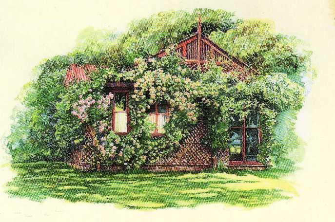 Miss jane il 21 luglio nel racconto di un diario di for Planimetrie inglesi del cottage
