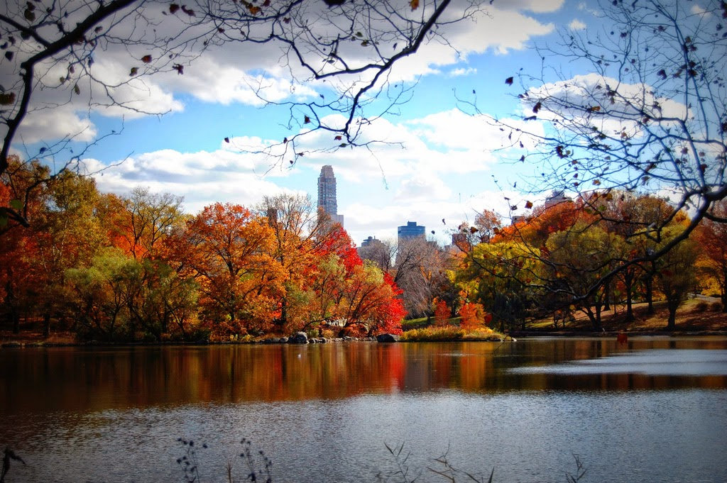 autumn in new york - photo #7