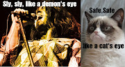 Grumpy cat meets Deep Purple. Grumpy cat meets Deep Purple