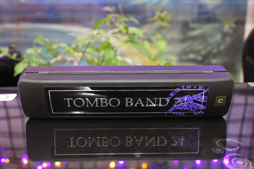 Tombo Band 24 (24 lỗ)