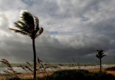Amaran Angin Kencang Dan Laut Bergelora