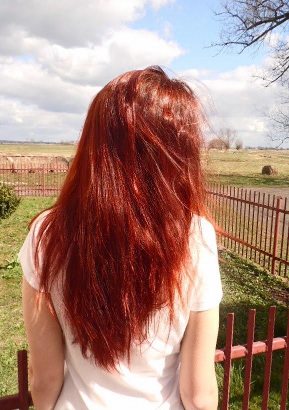 Niedziela dla włosów 30 | Testy nowej Balei Pfirsich&Cocos