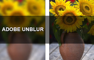 Cheap Auto Insurance Quote >> Adobe Photoshop Unblur Feature | Interesting news around the world