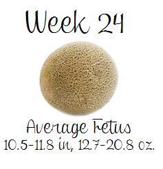 Pregnant Week 24