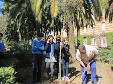 Planting a cork tree in Villafranca de los Barros