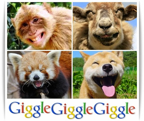 Cute Giggling Animals