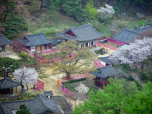 Lembah-Lembah Indah Penyejuk Musim Panas Korea